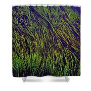 Grass In The Lake Shower Curtain