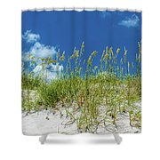 Grass On The Beach, Bill Baggs Cape Shower Curtain