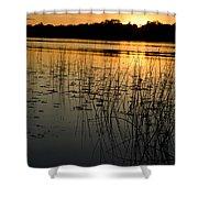 Grass Reflection 2 Shower Curtain