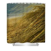 Grass To Sea Shower Curtain