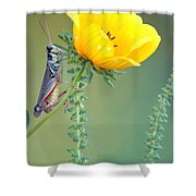 Grasshopper Be Still Shower Curtain