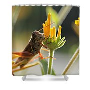 Grasshopper Delight Shower Curtain