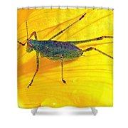 Grasshopper Shower Curtain