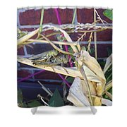 Grasshopper Piggyback Shower Curtain