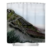 Grasshopper Resting Shower Curtain