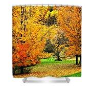 Grassy Autumn Road Shower Curtain