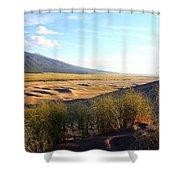 Grassy Dune Shower Curtain