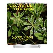 Grateful Dew Shower Curtain