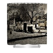 Grave Consequences Shower Curtain