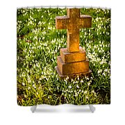Gravestone With Snowdrops Shower Curtain