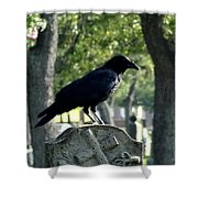 Graveyard Bird On Top Of A Tombstone Shower Curtain
