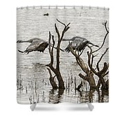 Gray Day At Whitewater Shower Curtain