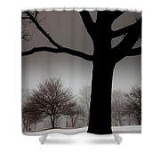 Gray Skies At Night Shower Curtain