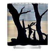 Gray Sunset Shower Curtain