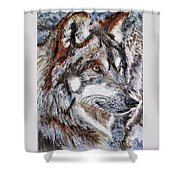 Gray Wolf Watches And Waits Shower Curtain by J McCombie