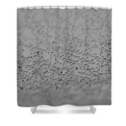 Gray World Shower Curtain