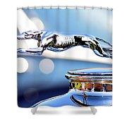 Grayhound Glamour Shower Curtain