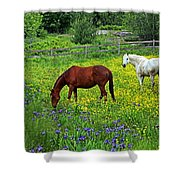 Grazing Amongst The Wildflowers Shower Curtain