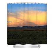 Grazing Bison Shower Curtain