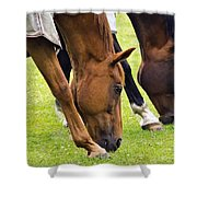 Grazing In Sync Shower Curtain