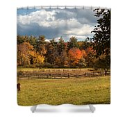 Grazing On The Farm Shower Curtain