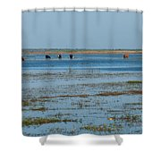 Grazing The River Shower Curtain