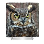 Great And Horned Shower Curtain