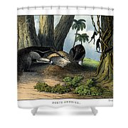 Great Anteater Shower Curtain