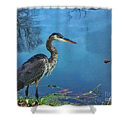 Great Blue Along The Canal Shower Curtain