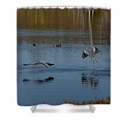 Great Blue Dance Shower Curtain