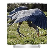 Great Blue Dining Out Shower Curtain
