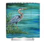 Great Blue Heron-2a Shower Curtain
