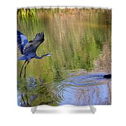 Great Blue Heron And Coot Shower Curtain