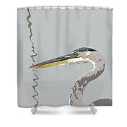 Great Blue Heron And Rushes Shower Curtain