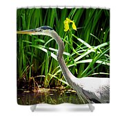 Great Blue Heron By Yellow Flower Shower Curtain