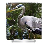 Great Blue Heron - Colorful Reflections Shower Curtain