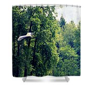 Great Blue Heron Flying Past The Trees Above Trojan Pond 2 Shower Curtain