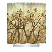 Great Blue Heron Hangout Fine Art Shower Curtain