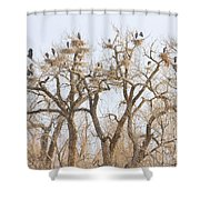 Great Blue Heron Hangout Shower Curtain