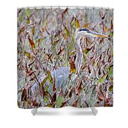 Great Blue Heron In Fall Marsh Shower Curtain