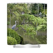 Great Blue Heron In Pond Kyoto Japan Shower Curtain
