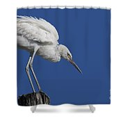 On Top Of The World... Pole Shower Curtain