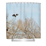 Great Blue Heron Nest Building 2 Panorama View Shower Curtain
