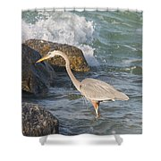 Great Blue Heron On The Prey Shower Curtain
