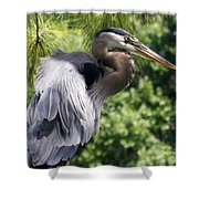 Great Blue Heron Vi Shower Curtain
