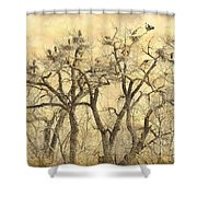 Great Blue Herons Colonies Fine Art Shower Curtain