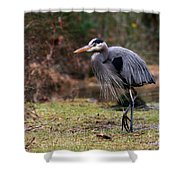 Great Blue On The Clinch River IIi Shower Curtain