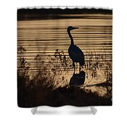 Great Blue Silhouette Shower Curtain