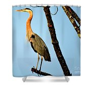 Great Blue Sunset Shower Curtain