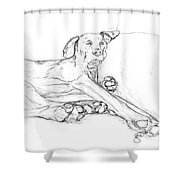 Great Dane Dog Sketch Bella Shower Curtain